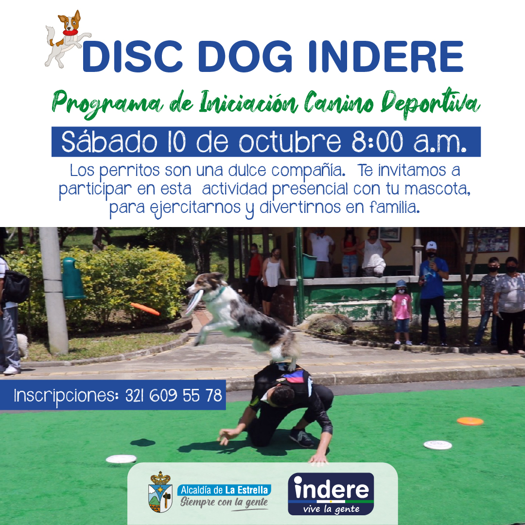 Disc Dog Indere